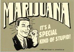 marijuana stupid