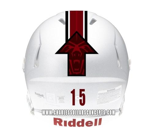 bear up helmet 5