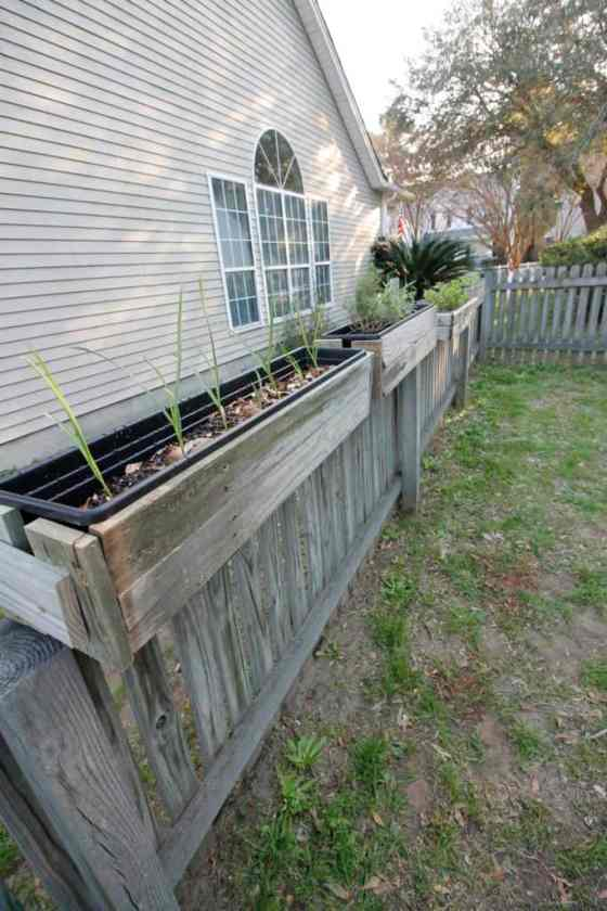 DIY Hanging Fence Planters - Charleston Crafted