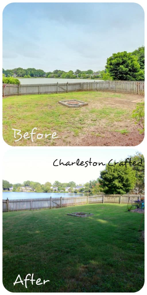 What I've Learned About Growing Grass - Charleston Crafted