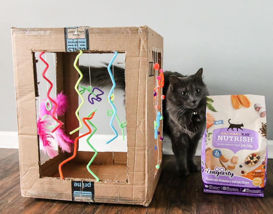 Diy Cardboard Cat Play Box Charleston Crafted