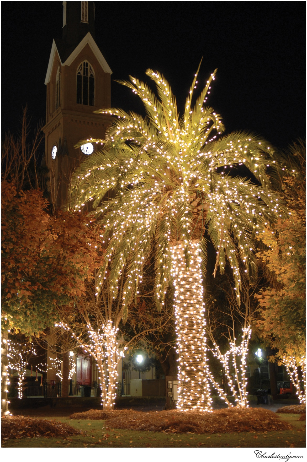 begin planning your holiday getaway and have yourself a merry little christmas in charleston