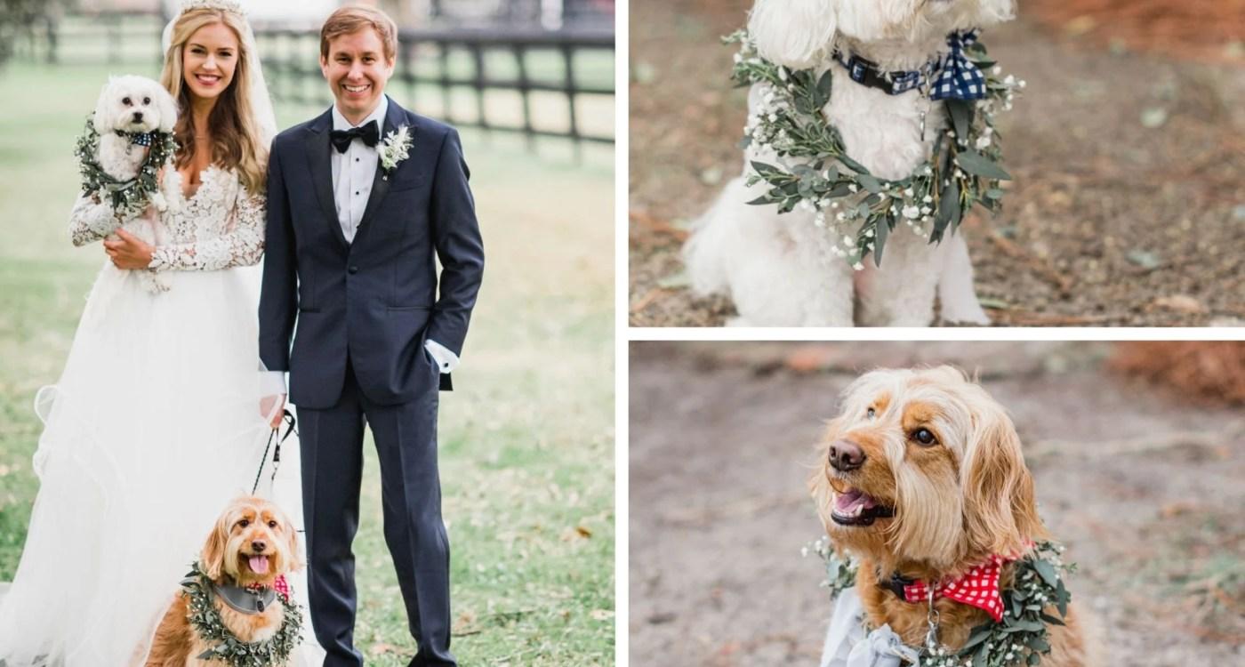 Boone-Hall-Plantation-Wedding-BrandonLata-Townes3