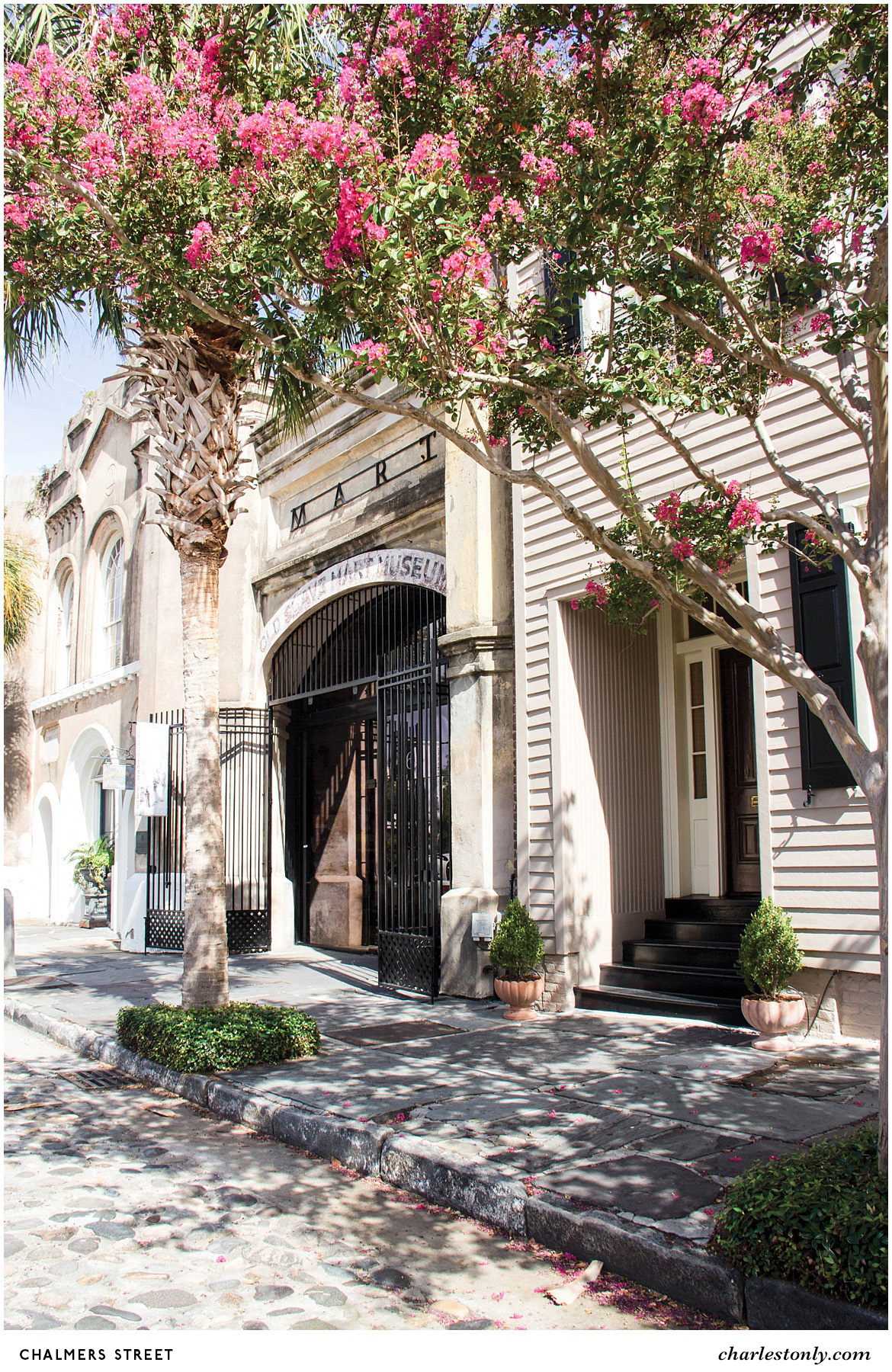 8 Iconic Streets to Explore in Charleston - Explore