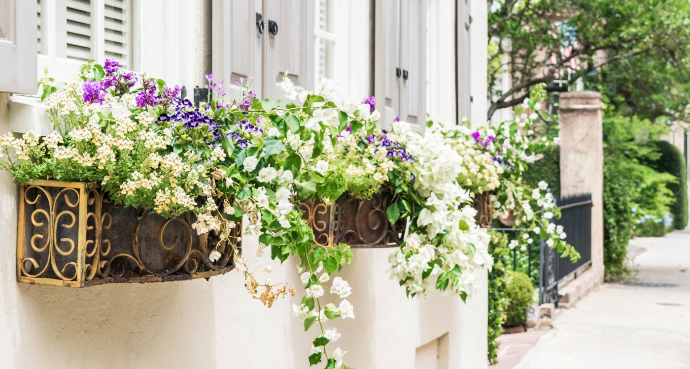 7 Charleston Treasures to Gift Mom this Mother's Day