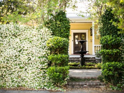 Charleston B&B's That Will Make You Want to Move In