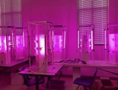 Aeroponics lab at Charleston Southern University