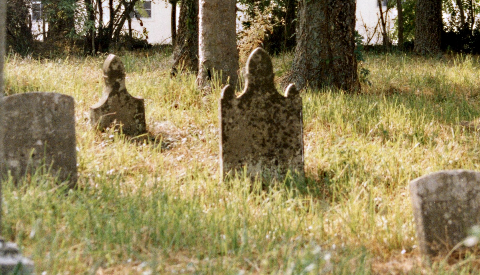 Section of DeMoss Cemetery