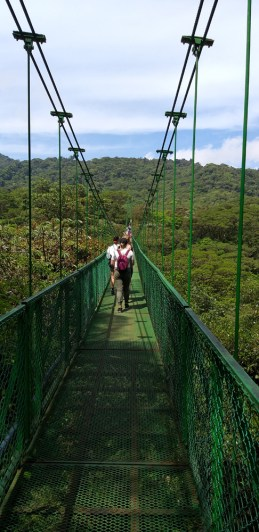 Selvatura Tree Tops Hanging Bridge