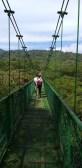 Selvatura Tree Tops Hanging Bridge