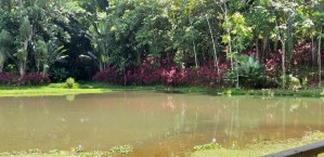 Lake by main building