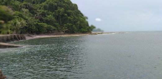 A little sand beach