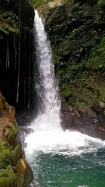 Oropendola Waterfall