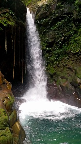 Oropendola Waterfall.