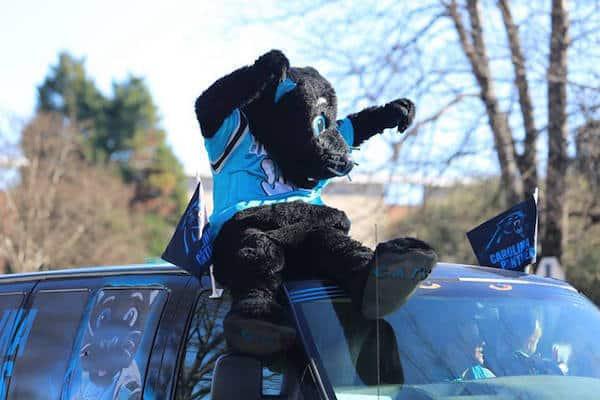 mlk-parade-sir-purr