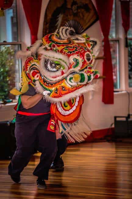 chinese new year peaceful dragon 2