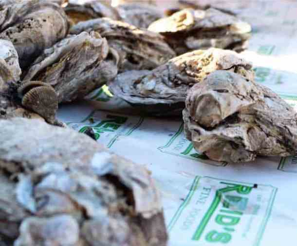 reid's oyster roast