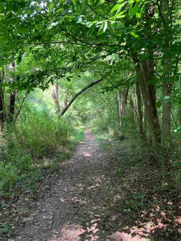 Ribbon Walk Nature Preserve