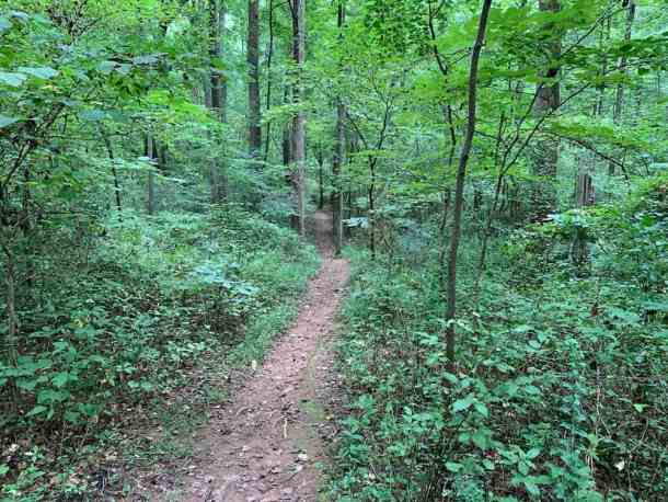 Ribbon Walk narrow path