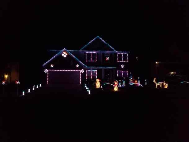 Lights on Indian Beech