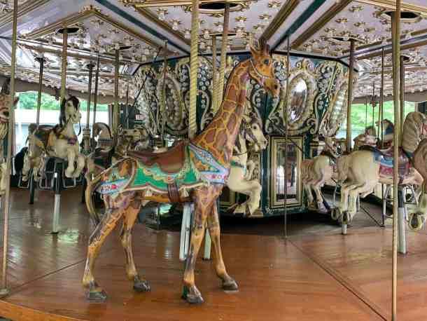 Giraffe in carousel
