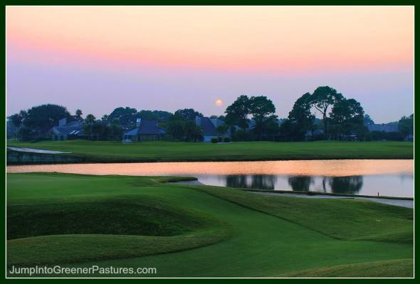 Homes for Sale in Centra VA Golf Communities