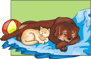 cartoon drawing of a dog and cat sleeping together