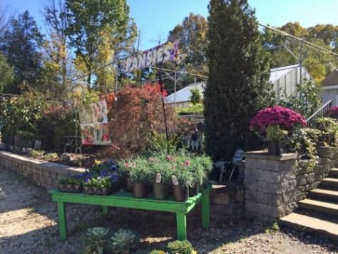 best garden spot in charlottesville - Garden Spot