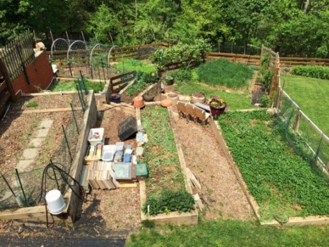 vegetable gardening in charlottesville va