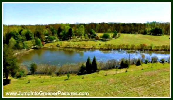 Horse Farms for Sale in Charlottesville VA
