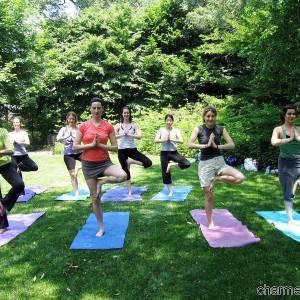 Una lezione di Yoga al parco