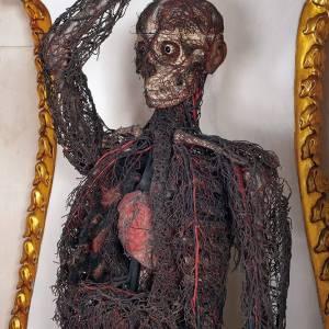 Una delle macchine anatomiche