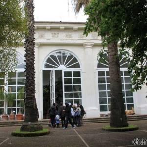 L'Orto Botanico di Napoli (photo Federica Rispoli)