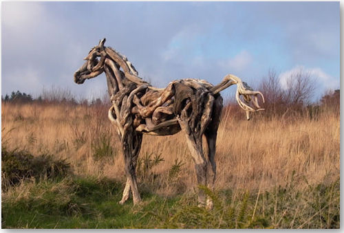 Fortune Filly - © Heather Jansch