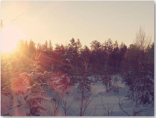 Wintermorgen - © Liisa
