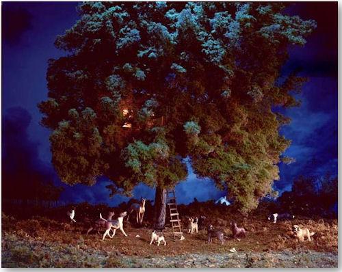 Treehouse aus der Serie Lost - © Lori Nix