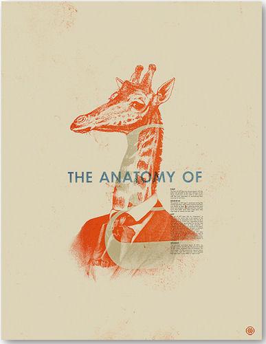 The Anatomy Of - © Mark Weaver