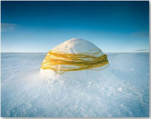 Wrapped - © Scarlett Hooft Graafland