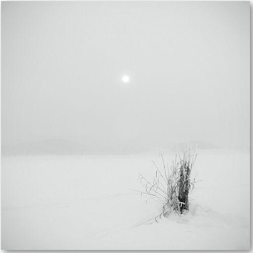 subtle - © Rudolf Vl?ek