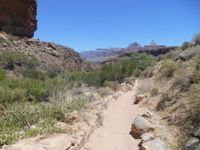 National Parks in Western USA - grand canyon