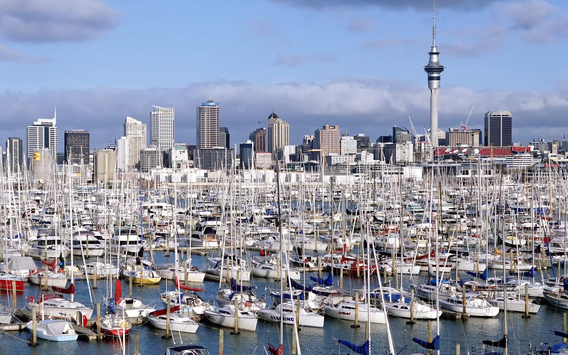 Westhaven Marina Auckland North Island New Zealand