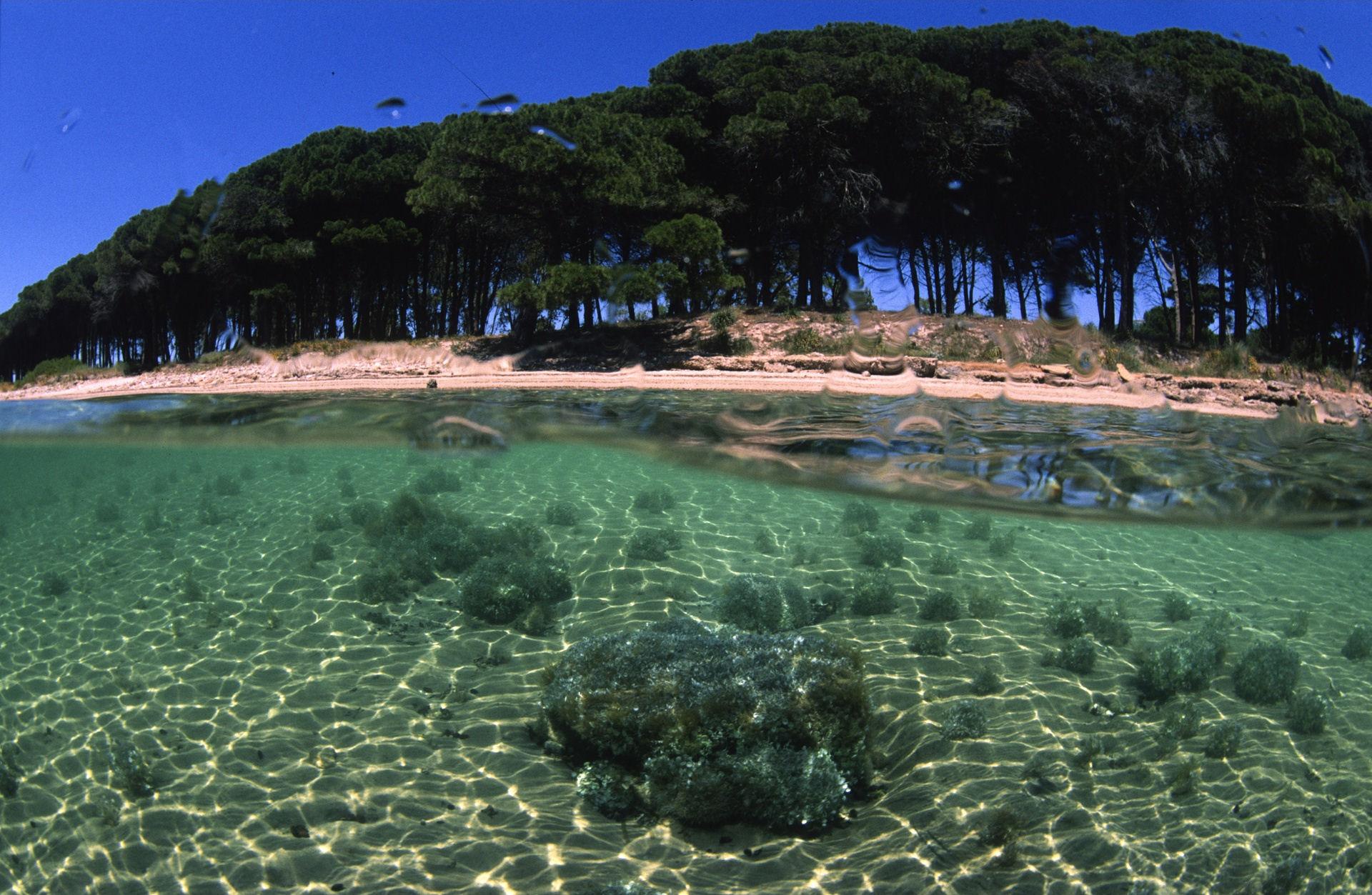 Sardinia  Yacht Charter  Superyacht News