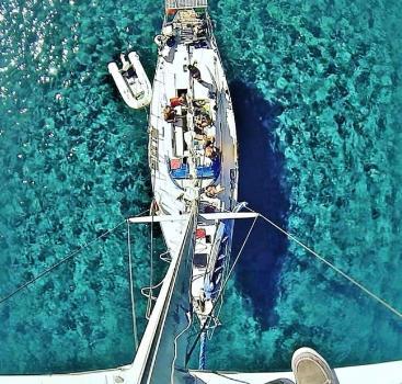 Nelson 48 oceanica