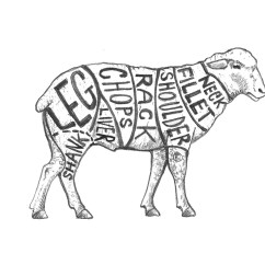Vintage Lamb Butcher Diagram How To Make Er For A Project Chart Farm