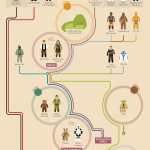 Star Wars Flowchart