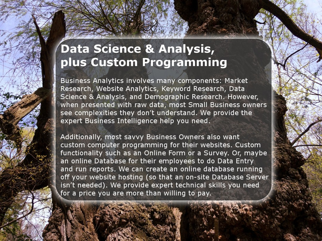 Data Science & Analysis, plus Custom Programming by Chase-It Marketing - Durand-Eastman Beach - Copyright, © 2019 Colin Chase