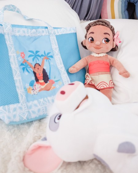 Moana: A Homecoming Celebration, Disneyland Hongkong