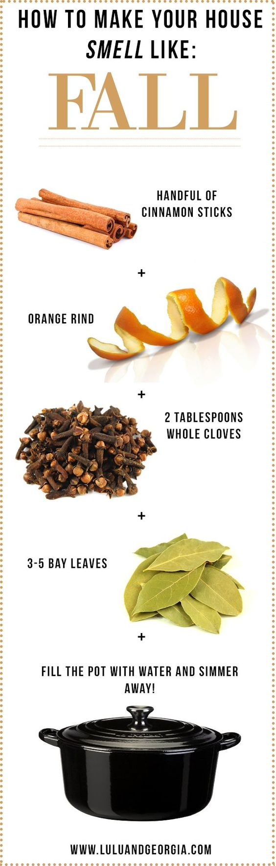 Make Your House Smell Like Fall Infographic