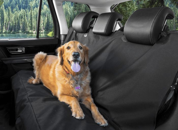 A happy dog sat on pet seat cover inside a car
