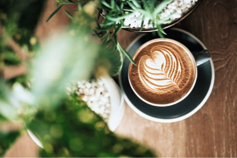 A latte on a table with a plant